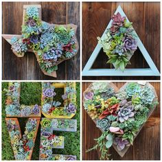 etsy holiday gift guide succulent planters from succlentwonderland vertical succulent planters and diy sets
