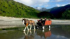 Golden Sands Horse & Wagon Tours Barrytown – West Coast, South Island