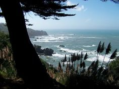 Hiking the trail on the Pacific coast cliffs at Patrick's Point, near Trinidad, California, 2007