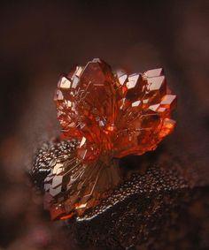 Normalmente vemos gemas e pedras preciosas no contexto de jóias. E, enquanto elasde fato sãoincríveis como brincos, anéis e colares, há algo ainda mais bonito sobre eles em sua forma verdadeira e…