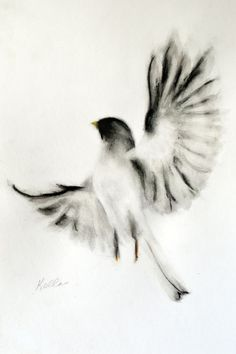 A proud and victorious bird! I used Chinese ink applied with a calligraphy brush, charcoal sticks, and pastel pencil. With his permission, I did this based on one of Wei Shyy's photos in his ...