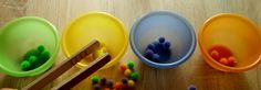 Segregowanie pomponów według kolorów i umieszczanie ich w odpowiednich miskach za pomocą szczypiec.