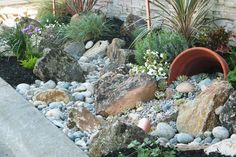 Easy Landscaping Ideas | Low Maintenance Yard | Landscaping With Rocks #LowMaintenanceLandscape