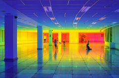 step inside a rainbow with liz west's immersive color landscape