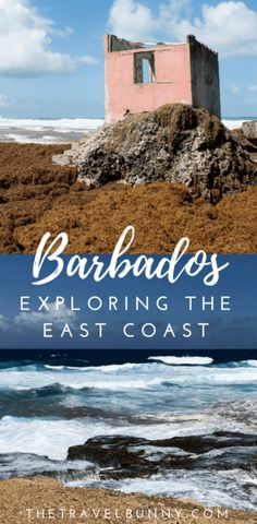 What to see and do on the East coast of Barbados in the Caribbean - sightseeing and travel guide  via @thetravelbunny