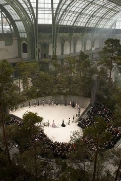 Chanel - forest in the Grand Palais