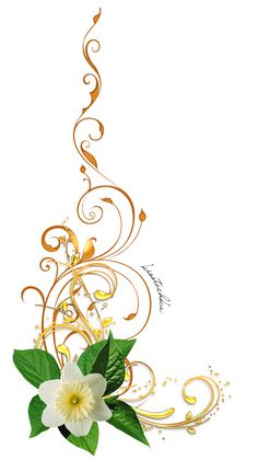 """Photo from album """"Цветочные уголки"""" on Yandex. Flower Frame, Flower Art, Images Lindas, Witchy Wallpaper, Boarders And Frames, Wreath Drawing, Background Design Vector, One Stroke Painting, Laurel Wreath"""
