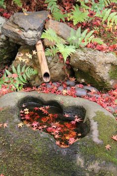 EATspeak: Kyoto - private garden  More secret gardens in Kyoto: http://www.japanesegardens.jp/gardens/secret/kyoto.php