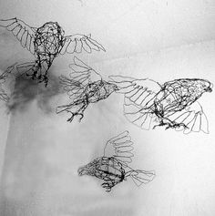 Flock of Pigeons-individual Bird--Wire Drawing Sculpture art.