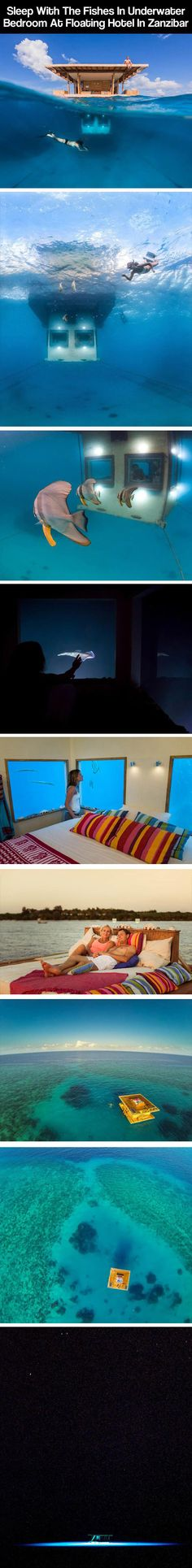 I want this - Zanzibar