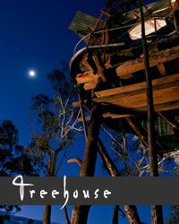 Self Contained Accommodation in the Blue Mountains ::: Blue Mountains Cabins
