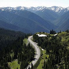 Hurricane Ridge  From Port Angeles, drive south on Hurricane Ridge road for 17 miles. Named for the 75-mile-an-hour winds that can blow here in winter, in summer the Ridge is merely spectacular, offering amazing views of the Olympic Mountains and the Olympic Peninsula coastline. Two good easy hikes start near the Hurricane Ridge Visitor Center: Hurricane Hill and Cirque Rim