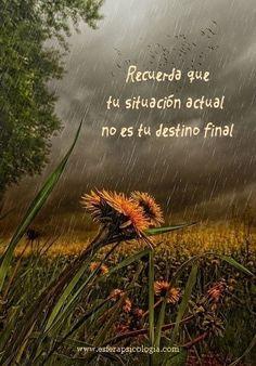 #reflexión #psicología