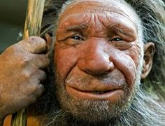 Did you know?  Neanderthals were ice-age Europeans who flourished between 200,000 and 30,000 years ago, shared about 99.84 per cent of their DNA with us, life expectancy was low with few reaching the age of 35 and may have suffering from the same problems modern humans face such as schizophrenia.