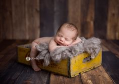 Glow Portraits by Alli (Blog) » Premier Baby, Belly  Boudoir Photographer » two-tone wood backdrop and floor, yellow crate, gray filler