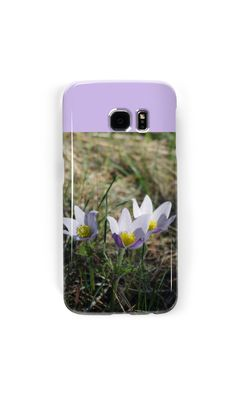 'Crocus Companions' Case/Skin for Samsung Galaxy by MsSexyBetsy Promotion, Samsung Galaxy, Phone Cases, Phone Case