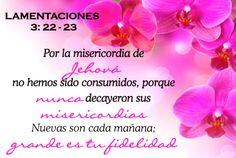 Grande es la fidelidad de Dios