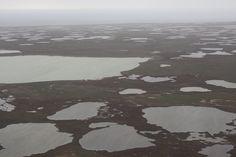 Kerguelen Archipelago landscape