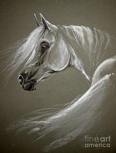 "Angel Tarantella  From the Board: ""Art - Equine.. QJ Happy Pinning )0( ^I^"