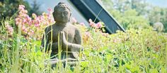 Medical Wellness, Meditation, Hotels, Garden Sculpture, Outdoor Decor, Home Decor, Program Management, Decoration Home, Room Decor