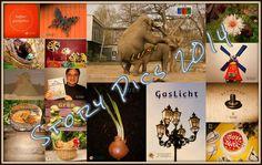 Story Pics Finale - Eine Sammlung Kurzgeschichten › Der Netzblogger