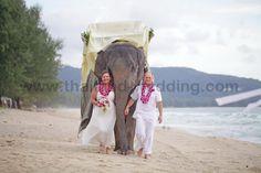 Phuket Beach Elephant Wedding Package : Louise + Bruce | Thai Marriage Planner