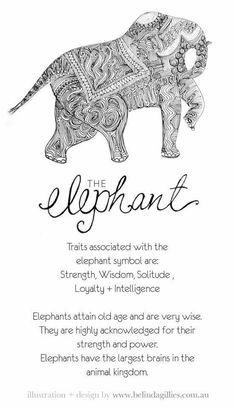 I'm definitely getting a elephant tattoo to repress my son Elephant Quotes, Elephant Love, Elephant Tattoos, Elephant Art, Elephant Stuff, Elephant Tattoo Design, Quotes About Elephants, Elephant Spirit Animal, Small Elephant