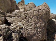 Rock Art RevelationsThis petroglyph located near Reno, Nevada is an example of the Great Basin Carved Abstract style. Researchers have concluded it's somewhere between 10,500 and 14,800 years old.