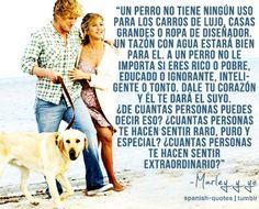perro ~ amigo ~ amor ¿Cómo es posible sin palabras?