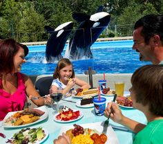 All-new Dine With Shamu premiering soon at SeaWorld Orlando Did this in 09 and recommend!
