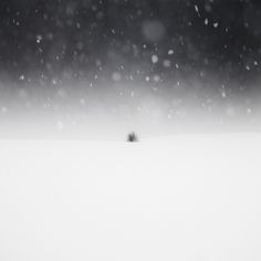 "Zoltan Bekefy, Winter Minimal "" Is there any other way to describe this series other than ""Awesome""? Zoltan Bekefy is an Irish photographer that. Minimal Photography, Winter Photography, Image Photography, Landscape Photography, Photography Ideas, Art Sites, Winter Photos, Online Gallery, Pretty Pictures"