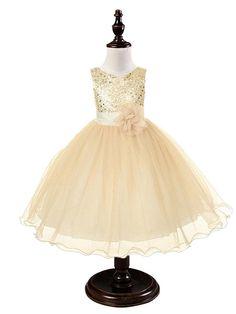 2015 Venta caliente vestido de flores vestido de la muchacha de los niños para el desgaste Vestido bebé Chica cordón del bebé vestidos de bautismo de la princesa fiesta de los niños