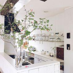 Decor, Green Interiors, Kitchen Plants, House, Kitchen Interior, Interior Design, Home Decor, Interior Architecture, Green Decor