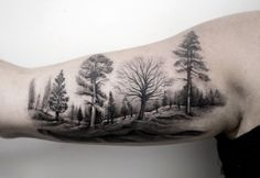 Wald Tattoo 45 Inspirierende Wald TattooBack To 21 Wald TattooWald Tattoos Und Waldbilder Wald Tattoo, Delectable Ideas Wald Tattoo 85 Negative Space Tattoo Motive Mit Pros Und Cons Dafür. Tattoos Arm Mann, Inner Arm Tattoos, Arm Tattoos For Guys, Body Art Tattoos, New Tattoos, Cool Tattoos, Tatoos, Tree Sleeve Tattoo, Back Tattoo