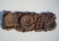 Fossile Wanddeko. Die Fossilien sind vom additiven Bildhauer Jens-Uwe Scholz erstellt
