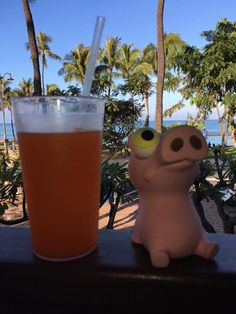 Izzy hydrating well for his upcoming day - Nothing like having your Pog Juice looking at the ocean and feeling that breeze at Lulu's Waikiki - Honolulu, HI · (14-Mar-2017)