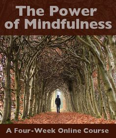 Sign up by October 3rd and we'll send you coupon for a guided meditation MP3!  The Power of Mindfulness: An Introductory Meditation Course Online  Mindfulness is about waking up to a new way of seeing things. And that's not easy to do on your own.   This course begins on October 6, 2014. Sign up here: http://wld.mn/1aTbQRC