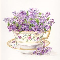 Watercolor Artists, Watercolor Paintings, Beautiful Paintings Of Flowers, Mod Podge Crafts, Tea Art, Vintage Tea, Doodle Art, Flower Art, Photo Art