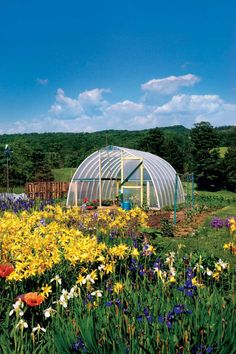 Use a plastic or metal hoop structure (PVC pipe works perfectly) to create a dome structure. Cover it in clear plastic for an affordable backyard greenhouse.  Get the tutorial at Mother Earth News.    - CountryLiving.com