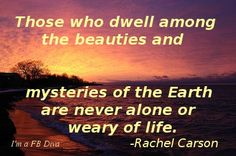 Rachel Carson quote on the mysteries and beauties of the Earth, earth, rachel carson, beauty, nature, conservationist, ecologist, life, inspirational quotes, loneliness