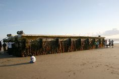 Agate Beach - Newport, Oregon - A 66-Foot-Long Dock from Japan dislodged by 2011 tsunami washes ashore on the Oregon Coast. http://www.newslincolncounty.com/?p=53166