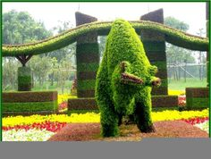 Moo-tiful!!   Topiary Gardens – Chinese Plant Sculpture… | A I R I E F Website