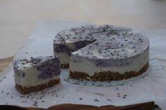 raw vegan cheesecake met bosbessen