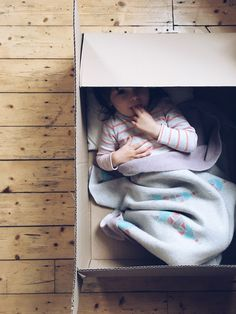 cozy bed in a cardboard box