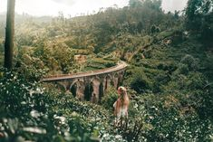 The favorite stop of every traveler is Ella, Sri Lanka. Surrounded by the beautiful greens of tea. These are the things to do in Ella.