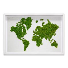 Moss Wall Art by Oliver Gal. See our huge selection of beautiful finished moss decor designed to give any room a unique look. Moss Wall Art, Moss Art, Oliver Gal Art, Vertical Garden Wall, Grafiti, House Plants Decor, How To Preserve Flowers, Art And Technology, Art Of Living
