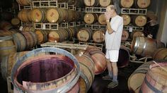With spilled wine covering the floor, winemaker Tom Montgomery views damage caused by Sunday's earthquake at B.R. Cohn Winery's barrel storage facility in Napa, Calif.