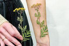 Fotos e Dicas de Tatuagem Botânica | Fotos de Tatuagens