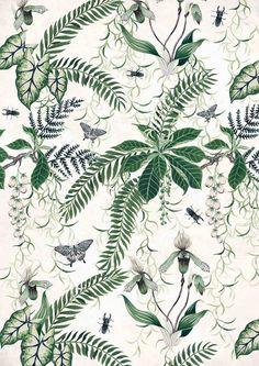 Tropical plant print inspiration.
