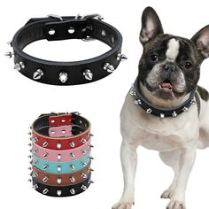 1 Wide Cool Spiked Studded Padded Leather Dog Collars For Small Medium Dogs Pitbull Terrier Adjustable S M L 5 Colors Dog Collars & Leashes, Leather Dog Collars, Pitbull Terrier, Dogs Pitbull, Short Dog Quotes, American Pit Bull Terrier, Love Your Pet, Medium Dogs, Studded Leather